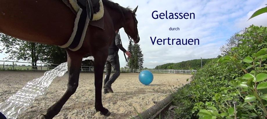 Rainer Kuboschek, Gelassenheitstraining- Titelbild